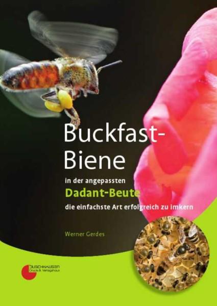 Gerdes, Buckfast-Biene in der angepassten Dadant Beute