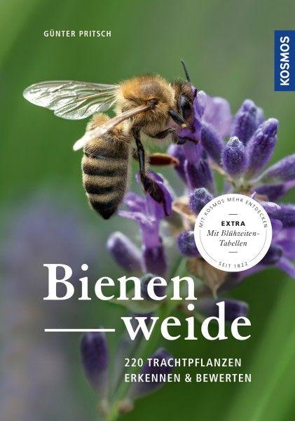 Pritsch, Bienenweide - NEU