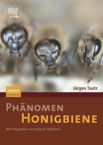 Tautz, Phänomen Honigbiene