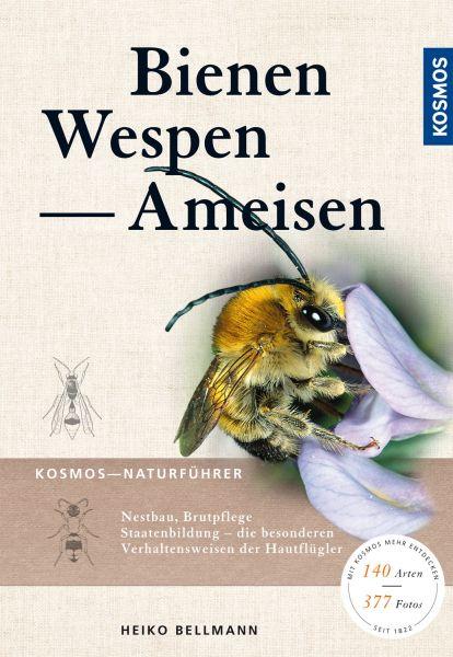 Bellmann, Bienen, Wespen, Ameisen