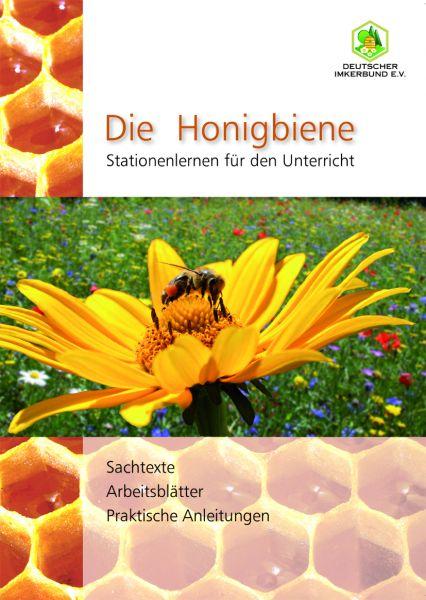 Die Honigbiene - Stationenlernen für den Unterricht