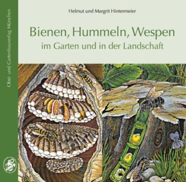 Hintermeier, Bienen, Hummeln, Wespen