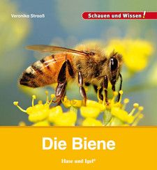 Straaß, Die Biene