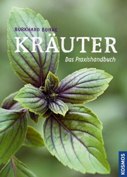 Bohne, Kräuter