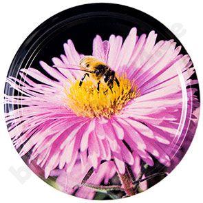 TO-Deckel 66 mm, Asternblüte