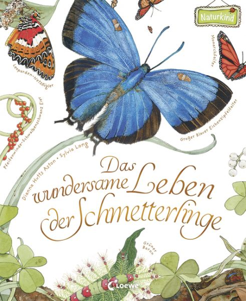 Aston, Das wundersame Leben der Schmetterlinge