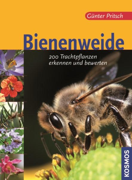 Pritsch, Die Bienenweide