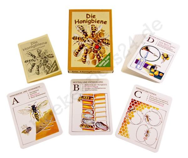 """Lernquartettspiel """"Die Honigbiene"""" im Karton"""