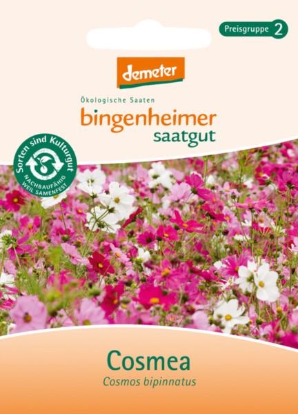 bingenheimer Saatgut Cosmea