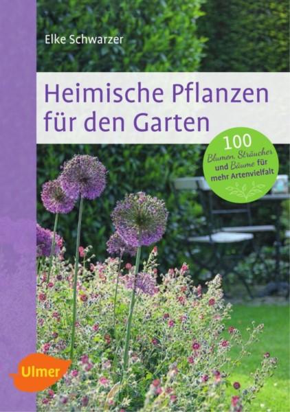 Schwarzer, Heimische Pflanzen für den Garten