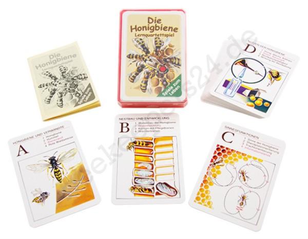 Bienen Lehrquartett